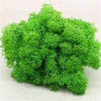 Hochwertige künstliche grüne Pflanze unsterbliche gefälschte Blume