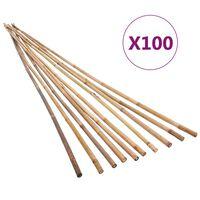 vidaXL Bambusstangen 100 Stk. 150 cm