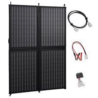 vidaXL Solarmodul Faltbar 100 W 12 V