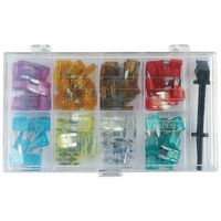 100 Tlg Kfz-sicherungen Set Mini (8 Werte Und Sicherungszieher)